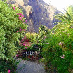 Tenerife-Dreams-11