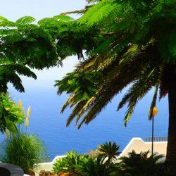 Tenerife-Dreams-15