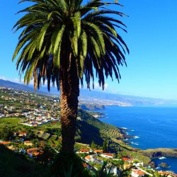 Tenerife-Dreams-18